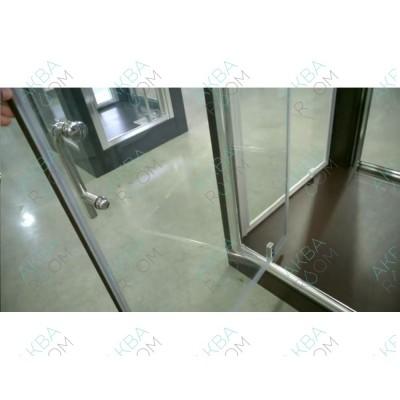 Душевая дверь TS-0509DL 90*200