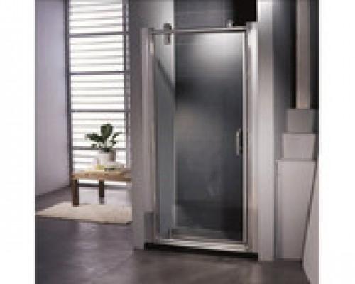 Душевая дверь TS-0509B 80*200